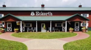 Enjoy Refreshing Fruit Slushies And Pick Your Own Produce At Eckert's Orchard In Kentucky