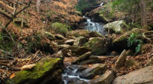 Waldrop Stone Falls Trail Might Be One Of The Most Beautiful Short-And-Sweet Hikes To Take In South Carolina