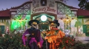 You Can Drive Through Grant Farm's Halloween At The Farm Experience In Missouri This Year