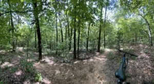 Grab Your Bike And Take A Ride Down The Lakeshore Mountain Bike Trail In Louisiana