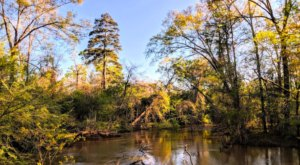 6 Of The Most Beautiful Fall Destinations Near New Orleans