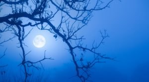 A Rare Halloween Blue Moon Will Appear In Kentucky In 2020 So Be Prepared