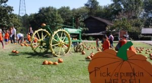 Enjoy Your Favorite Fall Festivities At Pumpkin Adventure In Mississippi