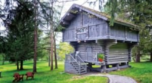 Fall Asleep In A Remote Scandinavian Cabin Treehouse In Pennsylvania