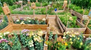 You'll Never Want To Find Your Way Out Of The One-Of-A-Kind Cut Flowers Maze In Nebraska