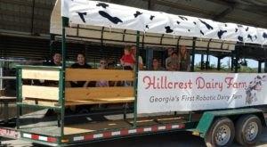 Enjoy A Tractor-Trolley Tour Through This Charming Dairy Farm In Georgia