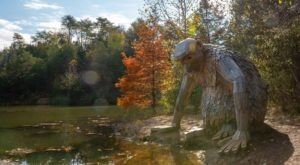 Stroll Under Vibrant Fall Colors Along The Paths Of Bernheim Arboretum In Kentucky