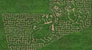Get Lost In This Awesome 7-Acre Corn Maze In South Dakota This Autumn