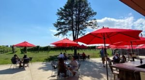 Treat Yourself To Autumn Bites And Wine Pairings At Newport Vineyards In Rhode Island