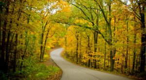 If Fall Is Your Favorite Season, You'll Want To Visit Brown County State Park In Indiana