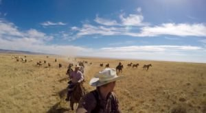 Herd Horses Across Wide-Open Terrain For A Rewarding Adventure At Silver Spur Ranch In Idaho