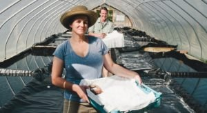 This 200-Year-Old Family Farm Harvests Salt From An Ancient West Virginia Ocean Buried Under The Appalachian Mountains