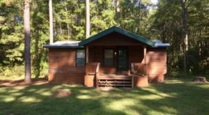 Sneak Away To An Autumn Retreat At A Forest Cabin With Waterfront Views At Grand Bayou Outfitters In Louisiana