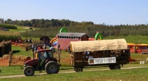 Triple B Farms Near Pittsburgh Promises A Socially Distant & Safe Good Time