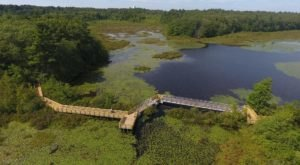 You Can Explore For Hours Upon The Boardwalks At Stony Brook Wildlife Sanctuary In Massachusetts