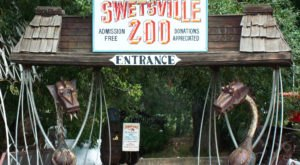 There Is Still Time To Visit The Iconic Swetsville Zoo In Colorado Before It Closes For Good