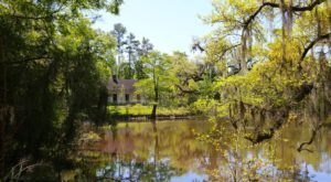 Enjoy Over 130 Acres Of Natural Beauty At Camp Salmen Nature Park Near New Orleans