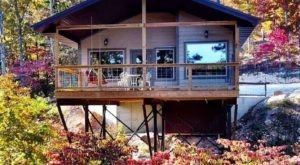 Experience The Fall Colors Like Never Before With A Stay At The River Of Life Treehouses In Missouri