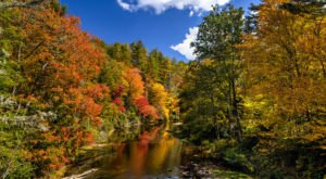10 Reasons Why It's Better To Visit Great Smoky Mountains National Park In Tennessee In The Fall