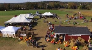 Pick And Paint Your Own Pumpkins Then Enjoy Endless Activities At Froehlich's Farm In Pennsylvania