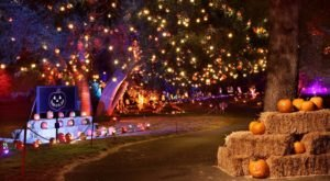 The Drive-Thru Halloween Wonderland In Southern California, Nights of the Jack, That's Glowing With Thousands Of Jack O' Lanterns