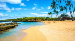 You'll Daydream Endlessly About A Family Beach Day Spent At Salt Pond Park In Hawaii