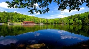 Little Beaver State Park In West Virginia Is So Hidden Most Locals Don't Even Know About It