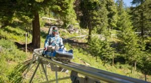 Take A Ride Through Idaho's Fall Foliage On The Glade Runner Mountain Coaster