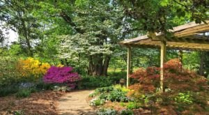 Botanical Garden of the Ozarks Is A Scenic Outdoor Spot In Arkansas That's A Nature Lover's Dream Come True