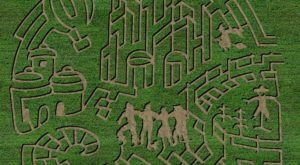 The Applestem Corn Maze Is Returning To Montana This Autumn And It's Absolutely Magical
