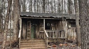 Feel Like You're In Your Very Own Horror Movie When You Try Escape Woods, An Outdoor Escape Room In Georgia