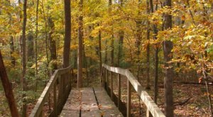 10 Of The Most Beautiful Fall Destinations In Louisiana