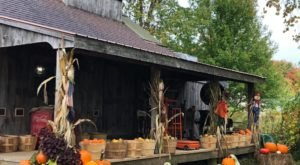 Nothing Says Fall Is Here More Than A Visit To Spring Hill Sugarhouse In Rhode Island
