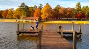 Camping, Swimming, and Mountain Biking Trails Await You At Lincoln Parish Park In Louisiana