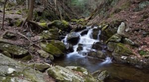A One-Mile Hiking Trail In Massachusetts, Stevens Glen Trail Is Full Of Babbling Brooks