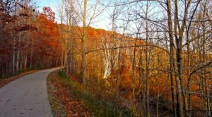 Betsie Valley Trail Is A 22-Mile Path In Michigan That Winds Alongside Lakes, Rivers, And Historic Towns