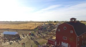 Fall Into The Season With A Weekend Trip To Linder Farms Fall Festival In Idaho