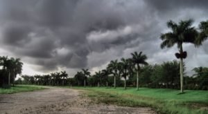 Floridians Should Expect A Chilly & Wet Winter According To The Farmers Almanac
