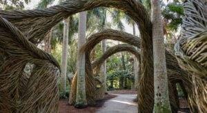 Wander Through The Magical, Otherworldly McKee Botanical Garden In Florida