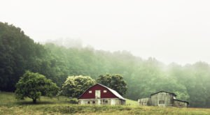 Butterflies, Barns, And 5 More Charms Nobody Mentions But Everyone Loves About West Virginia