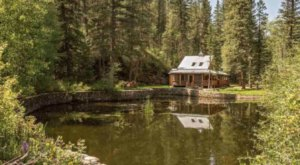 7 Must-Visit Airbnb Cabins That Are Ideal For A Fall Overnight Stay