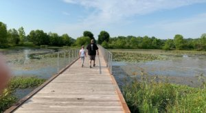 The Humana Grand Allee Trail Might Be One Of The Most Beautiful Short-And-Sweet Hikes To Take In Kentucky