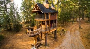 Experience The Fall Colors Like Never Before With A Stay At The Meadowlark Treehouse In Montana