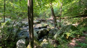 Dixon Springs State Park In Illinois Is So Well-Hidden, It Feels Like One Of The State's Best Kept Secrets