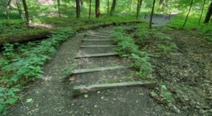 North Chagrin Reservation Is A Fascinating Spot in Cleveland That's Straight Out Of A Fairy Tale