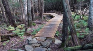 Hiking At Witt's End Trail In Maine Is Like Entering A Fairytale