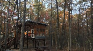 The Rustic Glamping Cabin At Deer Camp In Tennessee Is Almost Too Good To Be True