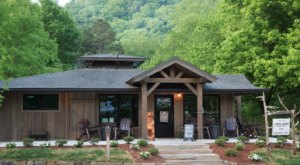 The Little Arrow Outdoor Resort In East Tennessee Offers Some Of The Best Glamping In The Entire State