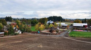 Roloff Farms Is A Fun, Fanciful Place To Get Your Halloween Pumpkin In Oregon