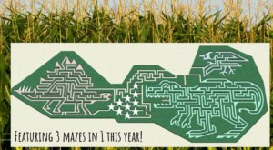 Get Lost In The Awesome Jurassic Park-Themed Cooley's Corn Maze In South Carolina This Autumn